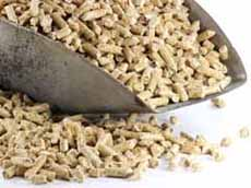 deadly threat in the pellet-storage-room