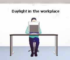daylight in the workplace