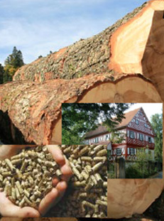 Holz, Lehm und andere Naturbaustoffe